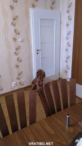 Монтирана врата Линеа м.1.2 Classen бял лак
